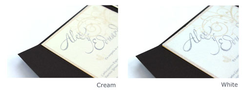 Cream and White Tissue Colors