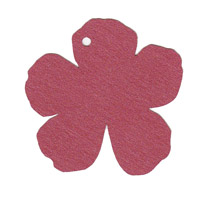 Hibiscus Flower Shape Pack