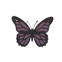 Butterfly Shape Pack