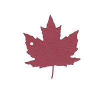 Maple Leaf Shape Pack