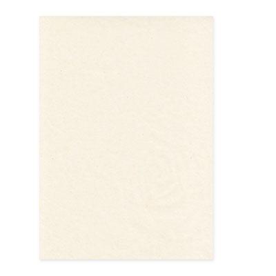 Invitation Tissue Overlay Cards Pockets